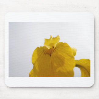 Yellow Flower Mouse Pad