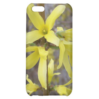 yellow flower nature floral tree blossom iPhone 5C covers