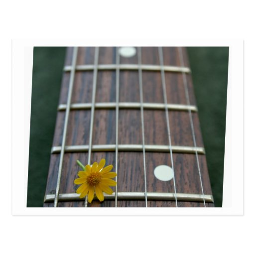 Yellow flower on receeding five string bass neck postcard