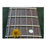 Yellow flower on receeding guitar neck postcard