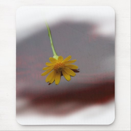 Yellow flower on red background photograph mousepad
