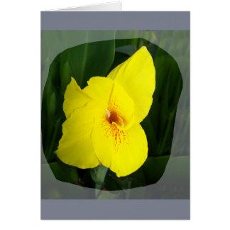 Yellow Flower Orange square Card