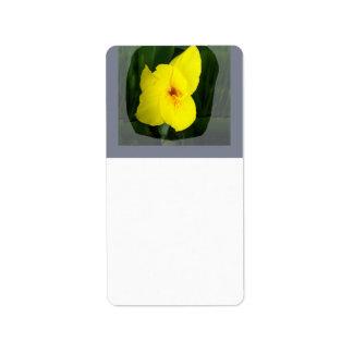 Yellow Flower Orange square Label