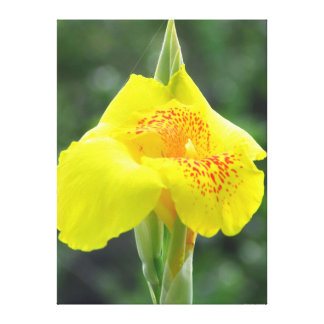 Yellow Flower Portrait Canvas Print