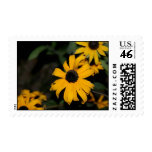yellow flower postage stamp