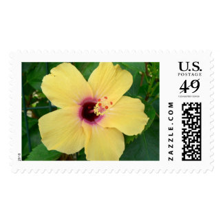 Yellow flower postage stamps