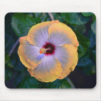 Yellow Flower Puff Mousepad