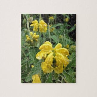 Yellow Flower puzzel Jigsaw Puzzles