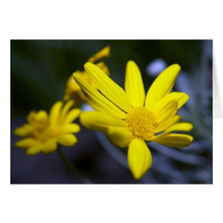 Yellow Flower - Ready for Spring? Card
