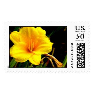 Yellow Flower Stamp