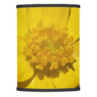 Yellow flower, summertime, photography, floral, lamp shade
