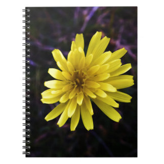 Yellow Flower Up-close Spiral Note Book