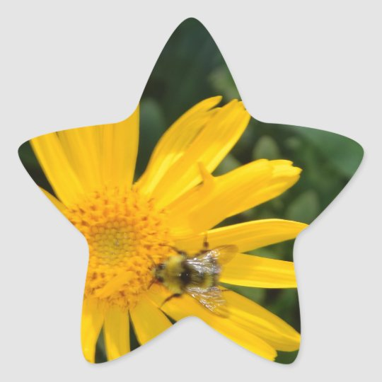 yellow flower with bee star sticker