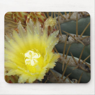 Yellow Flowering Cactus Mouse Pad