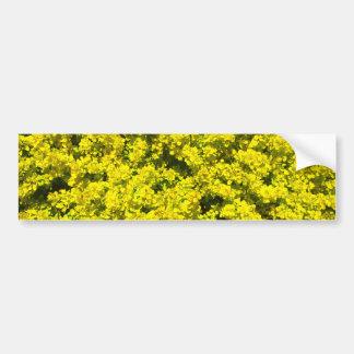 Yellow Flowering Shrubs Golden Template Woadwaxen Bumper Sticker