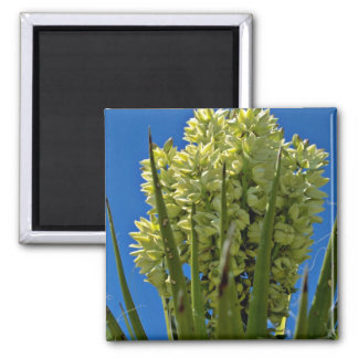 Yellow Flowering Succulent flowers Refrigerator Magnets