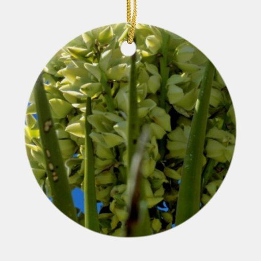 Yellow Flowering Succulent flowers Double-Sided Ceramic Round Christmas Ornament