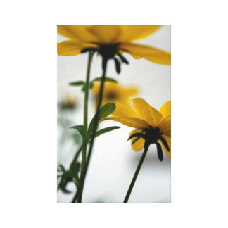 Yellow Flowers 2 Floral Photography Canvas