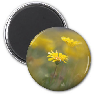 Yellow Flowers 2 Inch Round Magnet