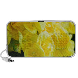 Yellow flowers 415 travelling speakers