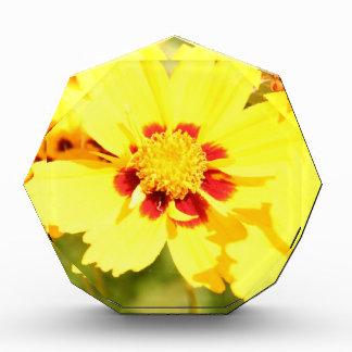 Yellow Flowers Acrylic Award