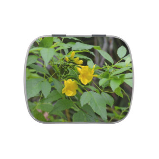 yellow flowers against green leaves candy tin