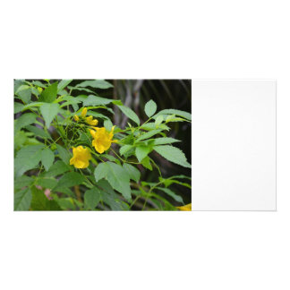 yellow flowers against green leaves photo card