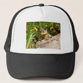 Yellow Flowers and cute  little Chipmunk Trucker Hat