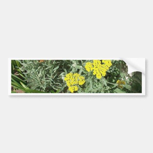 Yellow Flowers Bumper Stckr Bumper Sticker