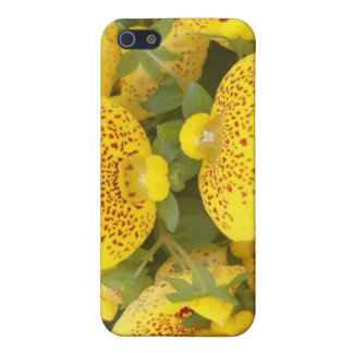 Yellow flowers case for iPhone 5