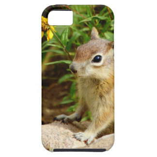 Yellow Flowers Chipmunk iPhone 5 Covers