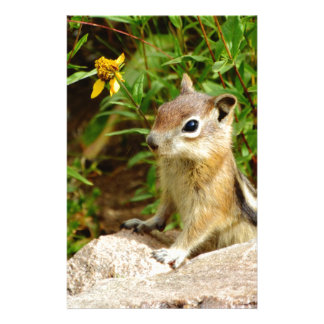Yellow Flowers Chipmunk Stationery