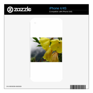 Yellow flowers closeup with water droplets iPhone 4S decal