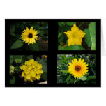 Yellow Flowers Collection Greeting Card