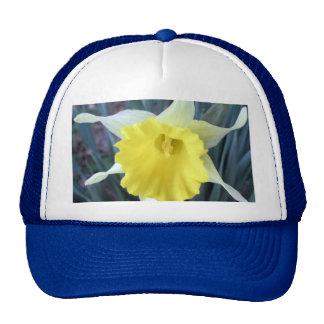 Yellow Flowers Daffodils Daffodil Flower Photo Trucker Hat