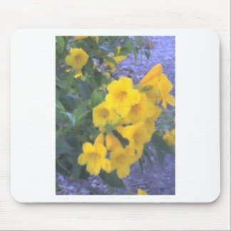 Yellow flowers for Farrah  2009 Mouse Pad