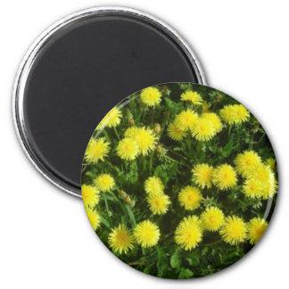Yellow flowers imán redondo 5 cm