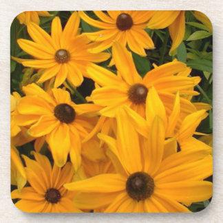 Yellow flowers in full bloom in flower garden beverage coasters