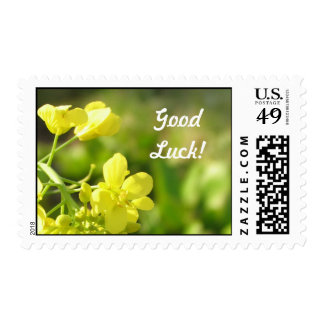 Yellow flowers macro photography postage stamp