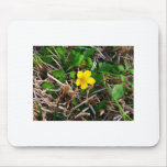 Yellow Flowers Mousepads