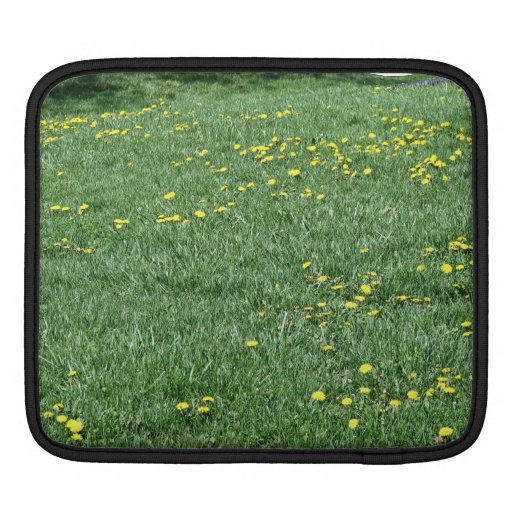 Yellow flowers of dandelions on a grassy landscape sleeves for iPads