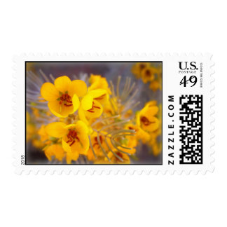 Yellow Flowers Postage Stamps
