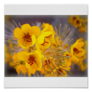 Yellow Flowers Posters