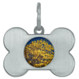 YELLOW FLOWERS QUEENSLAND AUSTRALIA PET TAG