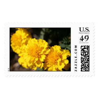 Yellow Flowers Stamps