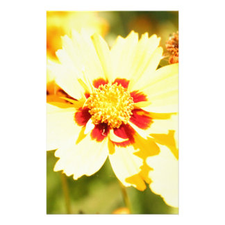 Yellow Flowers Stationery