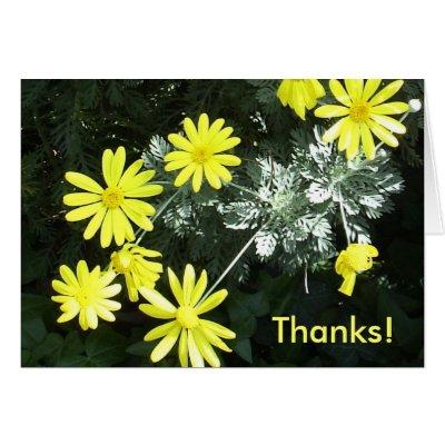 yellow flowers thanks
