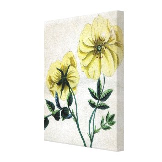 Yellow Flowers Vintage Botanical Wrapped Canvas wrappedcanvas