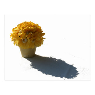 Yellow Flowers White Bucket and Shadow Postcard
