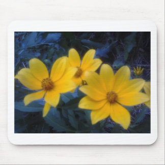 Yellow Flowersf Mouse Pad